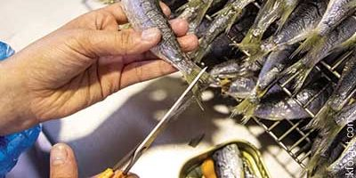 Hochwertige Fischspezialitäten aus der Atlantik